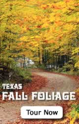 2017 Fall Foliage in East Texas ... click for foliage reports, foliage cam, suggested road trips and more 2017 fall foliage info!