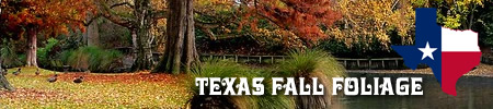 Fall foliage destinations and road trips in Texas