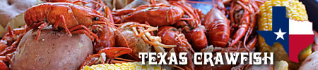 Texas Crawfish, Outlets, Festivals and Recipes