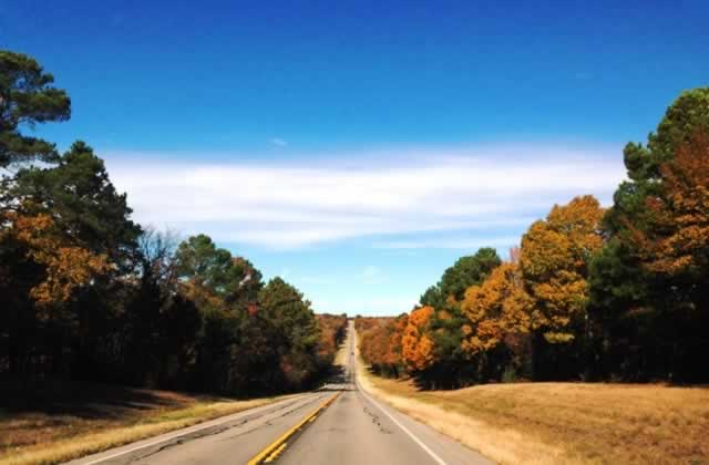 Fall foliage on FM 2868 just west of Flint in East Texas