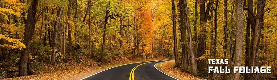 Scenic Texas road trip to view fall foliage travel destinations