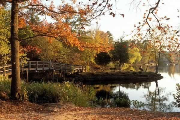 Beautiful fall colors around the lake at Tyler State Park