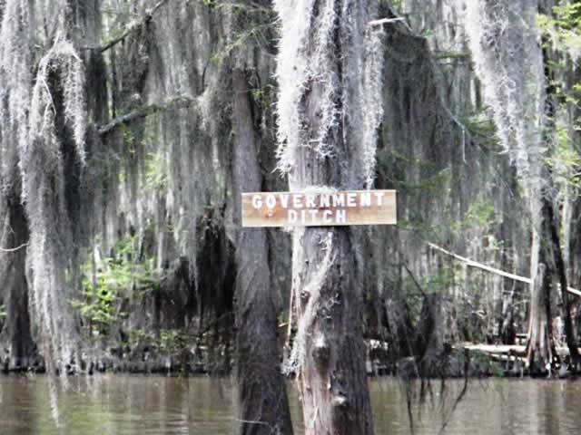 Government Ditch ... in the Caddo Lake area