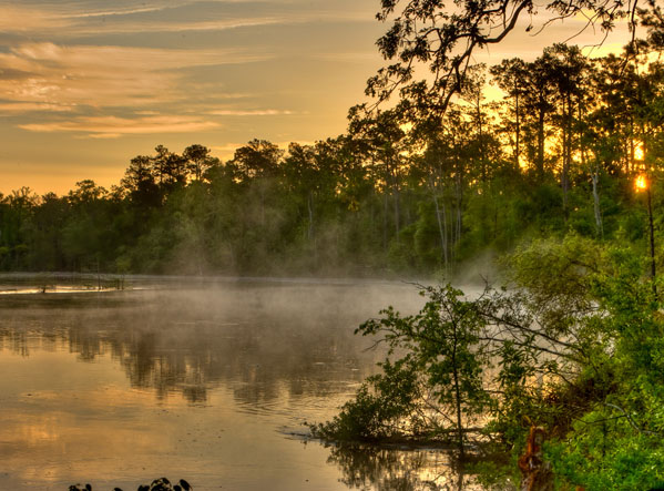 Peaceful lake scene at Village Creek State Park in Texas