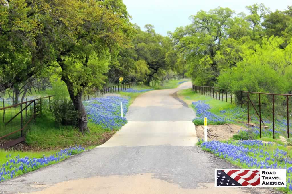One of our favorite back roads for seeing Bluebonnets in the Spring - the Willow Loop Road, near Fredericksburg, Texas