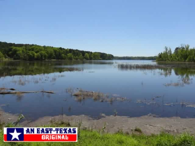 Toledo bend reservoir and lake along the louisiana and for Toledo bend fishing