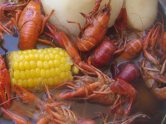 Texas Boiled Crawfish